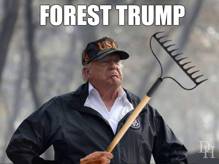 20 Brutally Hilarious Memes Mocking Trump's Raking Solution