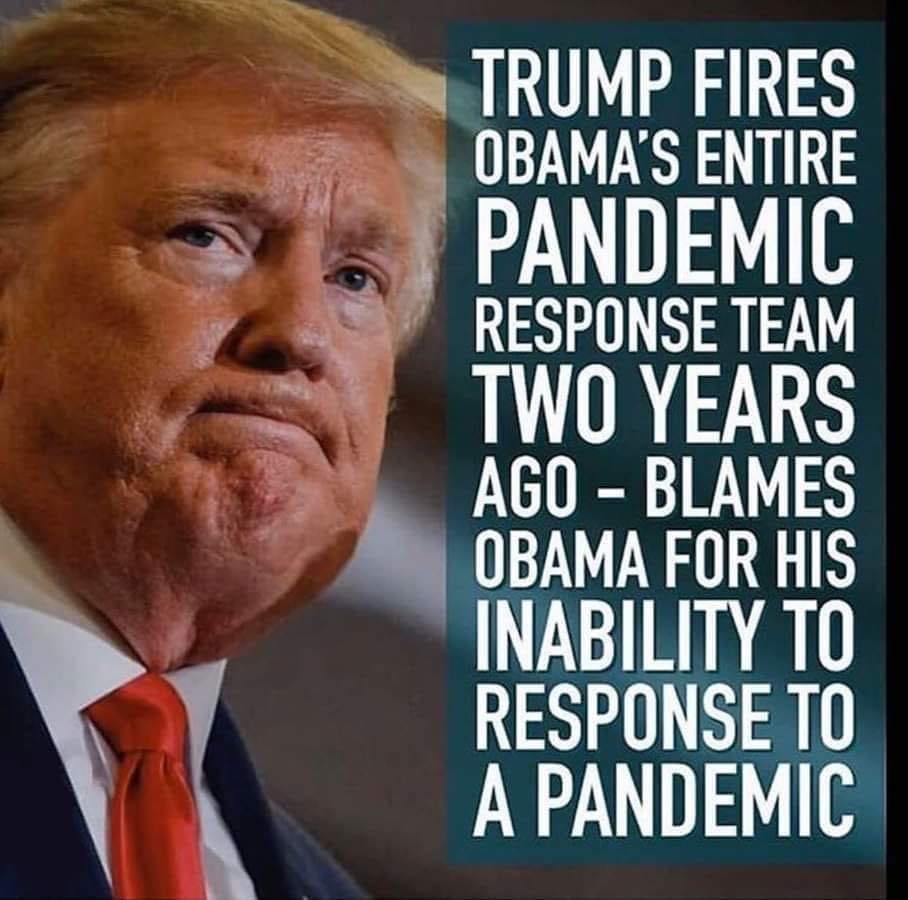 trump-fires-pandemic-team.jpg