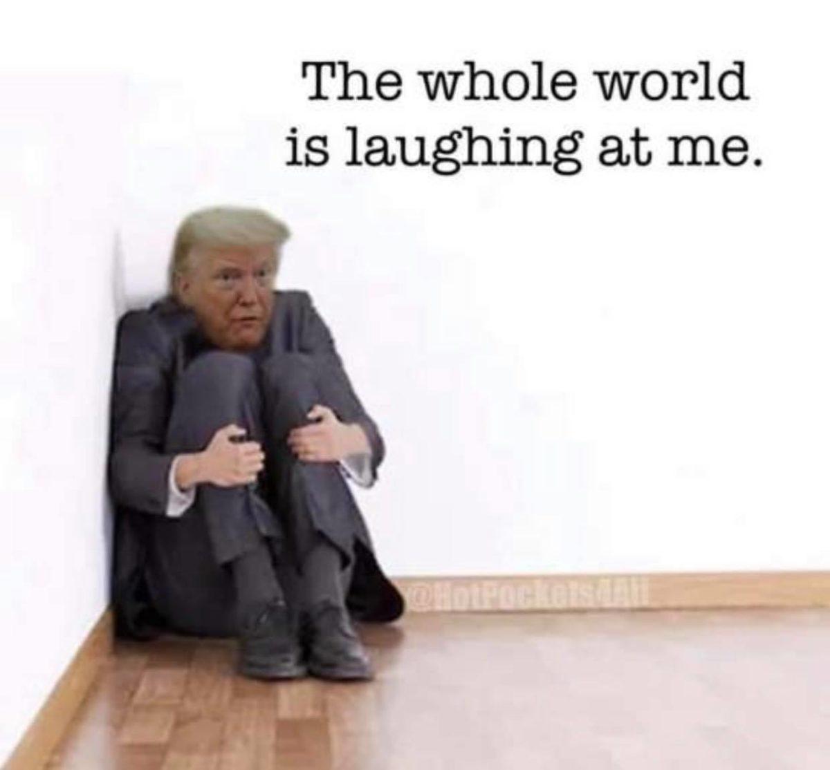 25 Brutal Memes Proving Trump Is A Supreme Loser